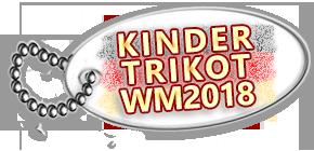 wm2018 trikot kinder